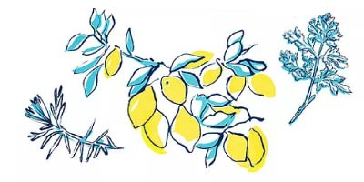 Limone Illustration